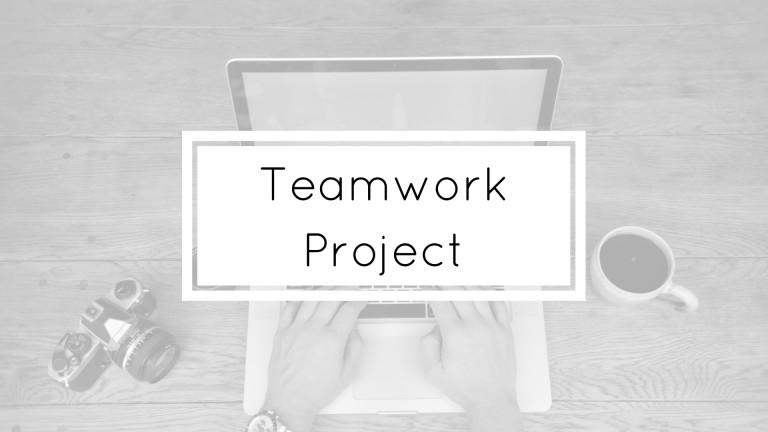 Teamwork Project Portfolio